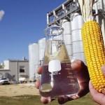 La rebaja del objetivo de biocarburantes aprobado por el Gobierno golpea a la maltrecha Abengoa