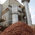 Se necesitan 645 MW nuevos de capacidad instalada de biomasa para cumplir los objetivos europeos 2020