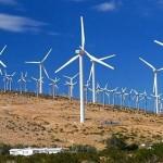 WWF exige al G20 más acciones a favor de las renovables