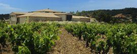 Una bodega de vinos ahorra casi 15.000 euros anuales con la instalación de paneles fotovoltaicos