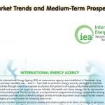 La eficiencia energética, imprescindible para el futuro modelo energético en la Unión Europea