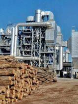 La biomasa reivindica su valorización como alternativa sostenible a los combustibles fósiles y el vertido