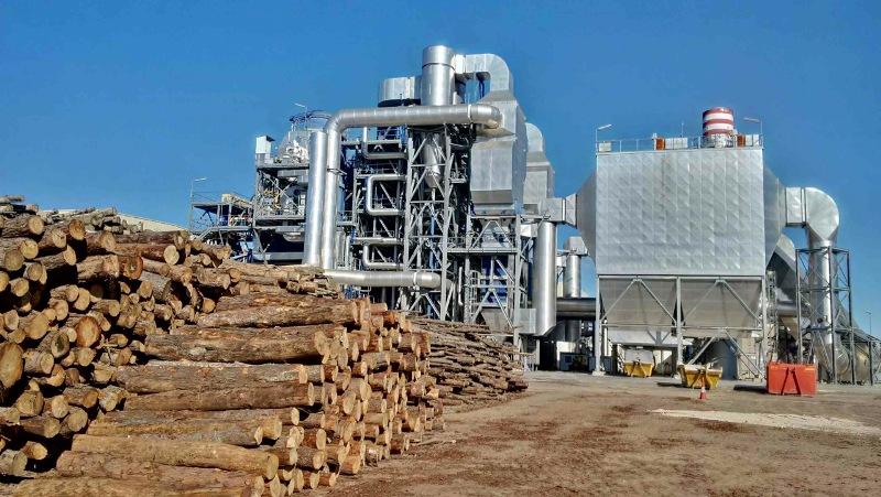 La Generalitat Movilizar 225 600 000 Toneladas De Biomasa Por
