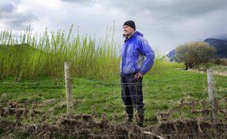 Un programa inédito en Reino Unido lanza a agricultores británicos al cultivo energético