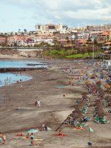 El Cabildo de Tenerife rechaza la instalación de macroplantas de biomasa