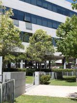 Blue Tree aspira a alcanzar los 1.000 MW bajo gestión en tres años