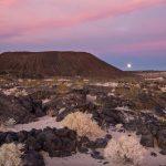 El plan para instalar renovables en el desierto de California decepciona a la industria solar