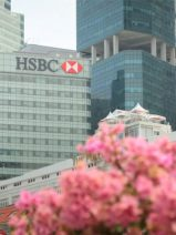 España recibirá 24 millones del primer bono verde emitido por HSBC