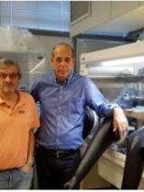 Investigan el uso de perovskita híbrida para fabricar células fotovoltaicas