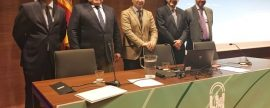 La biomasa sumó el 37% de la energía renovable generada en Andalucía en 2015