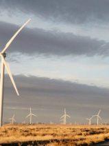 Acciona inaugura en Texas su octavo parque eólico en EE.UU