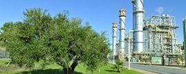 Gas Natural Fenosa recibirá 6,3 M€ por sus actividades en Doñana, según Equo