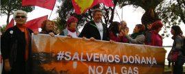 Energía pagará este año también 6,3 millones a GNF por almacenar gas en Doñana