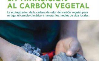 América Latina es la segunda región del mundo que más carbón produce y consume