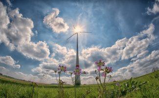 APPA: La fiscalidad verde debe ser clave en la Ley de Cambio Climático