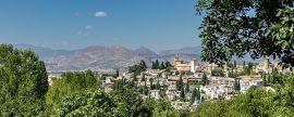 El sector de la biomasa concentra más de la mitad del empleo renovable en Andalucía