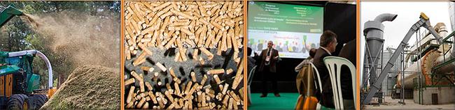 Avebiom, la Asociación Española de Valorización Energética de la Biomasa, organiza este evento.