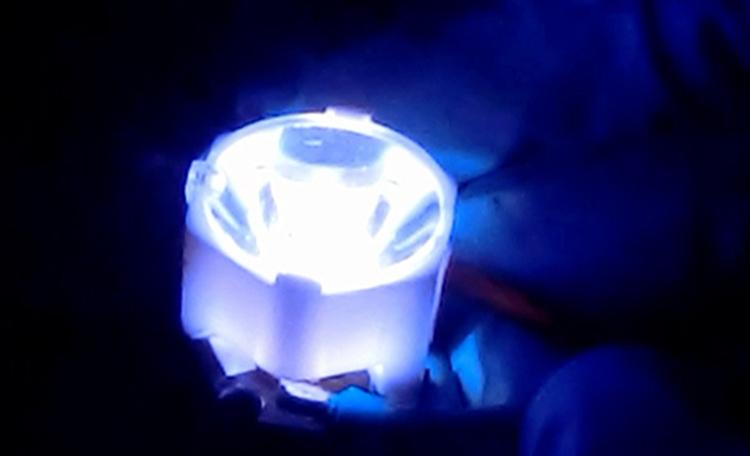 El proyecto ENABLED, para conseguir Bio-LEDs, está liderado por el instituto de investigación IMDEA Materiales.