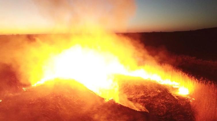 Incendios en la zona de exclusión de la central de Chernóbil.