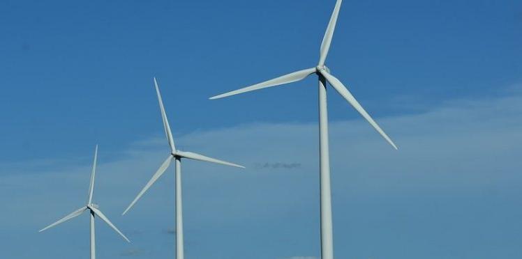 La contribución de las renovables durante los últimos siete días se ha disparado.