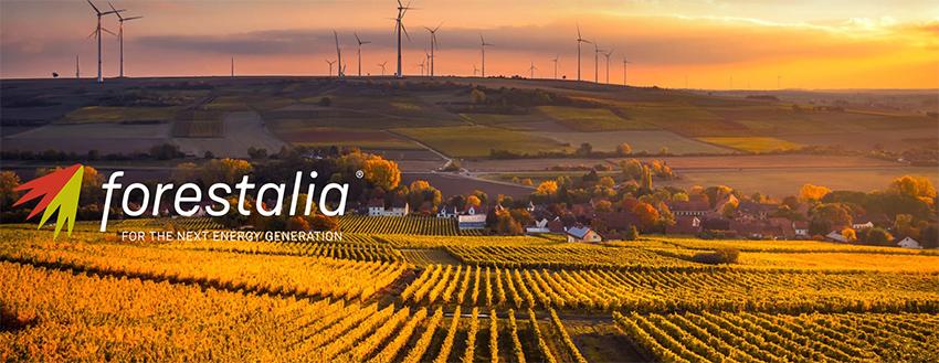 Forestalia, tras conseguir la financiación, inicia la construcción de la nueva planta fotovoltaica.