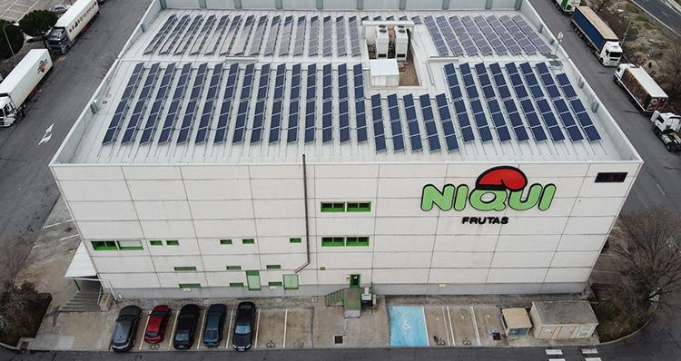 La instalación de Opengy de autoconsumo es para la sede de la compañía de Mercamadrid: Frutas Niqui Madrimport.