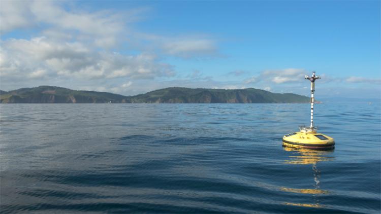 Tanto Euskadi, como Escocia, ofrecen los mejores recursos para el desarrollo de la energía eólica marina.